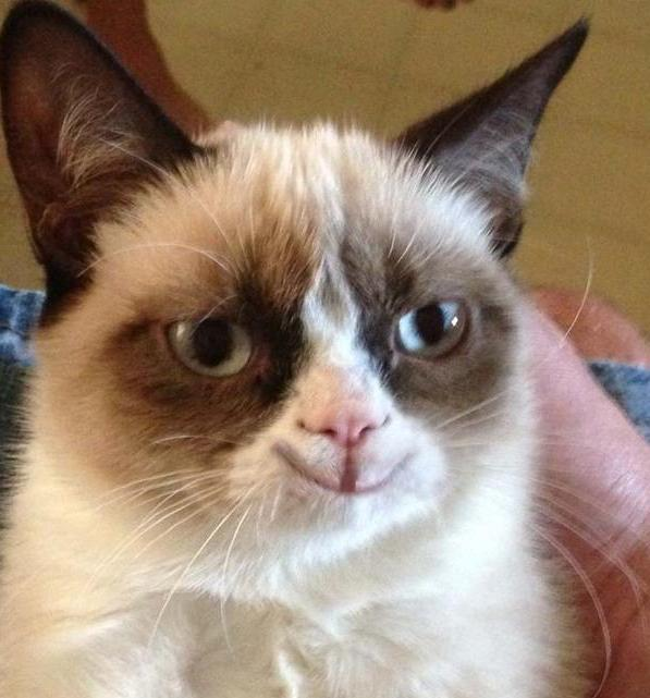 Grumpy cat smiling friday love